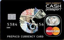 Tポイント付きキャッシュパスポート券面画像