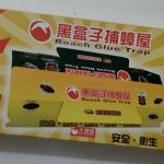 台湾生活で部屋にゴキブリが大発生!1匹いたら100匹いるって本当!?